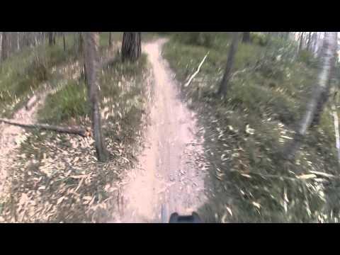 Daisy Hill 24-08-2012 Turning Japanese MTB Mountain Bike