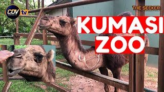 Let39s Tour the Kumasi Zoo Enjoy this adventure with the Seeker Ghana