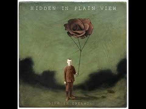 Hidden In Plain View -  A Minor Detail