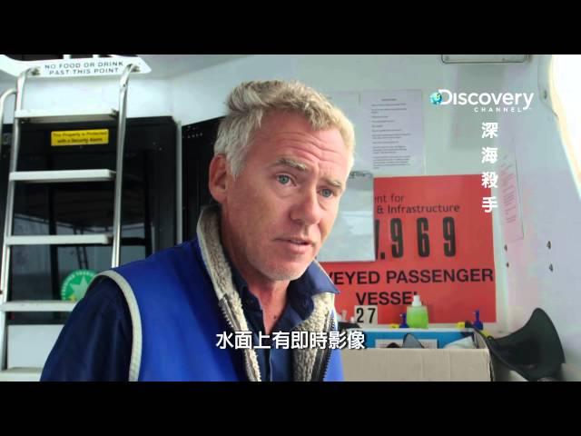 Discovery深海殺手 05一群帶著小孩的抹香鯨 HD MP4檔
