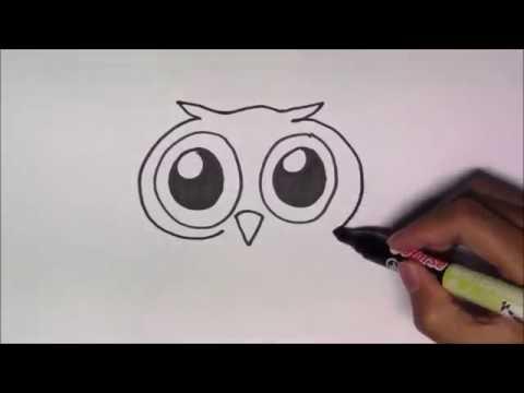 วาดรูปการ์ตูนน่ารัก ระบายสี และเรียนรู้ภาษาอังกฤษ Owl นกฮูก