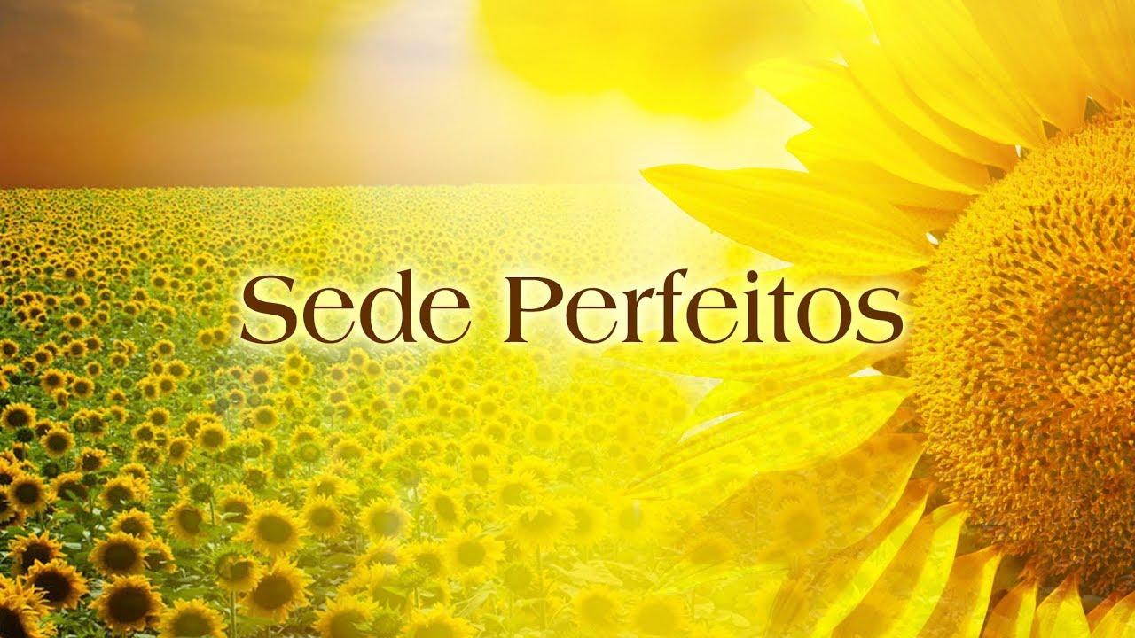 Sede Perfeitos