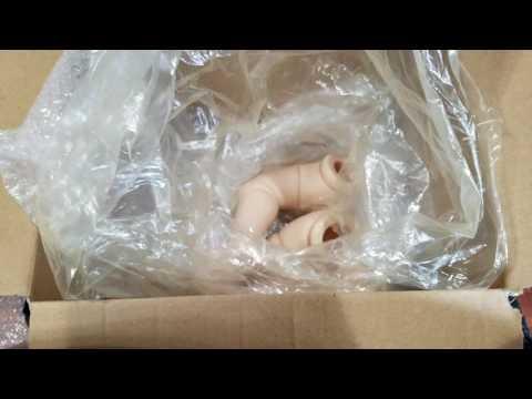 AMAZING BOX OPENING! BEAUTIFUL FAN MAIL! Reborn Baby Dolls