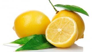 Выращивание лимона. Бизнес идея(Выращивание лимона в домашних условиях. Условия выращивания лимона., 2016-02-08T09:49:32.000Z)