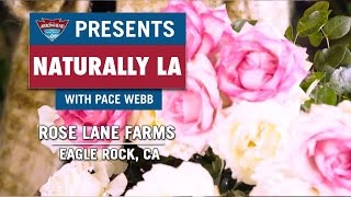 Naturally LA: Rose Lane Farms