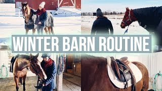 BARN ROUTINE feat. Equilab   Equestrian Prep