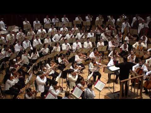 More STRAUSS Ein Heldenleben with Andris Nelsons & the TMCO!