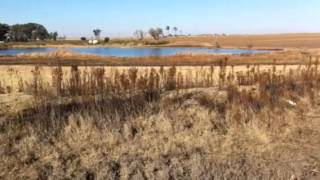 Vaal Dam sewage and health crisis - Deneysville / Refengkgotso - Part 6