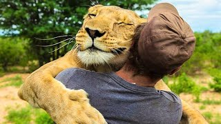 Animals That Asked People for Help►Real Life Heroes #15
