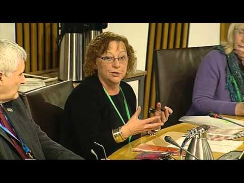 Equal Opportunities Committee - Scottish Parliament: 17th January 2013
