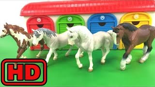 Kid -Kids -Schleich Horse Toys/Sea Animals/Learn Colors/Toy surprises/Kids Educational Fun Magic To