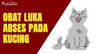 Cara Mengobati Luka Abses pada Kucing - How to Treat a Cat's Abscess (Eng.Sub)