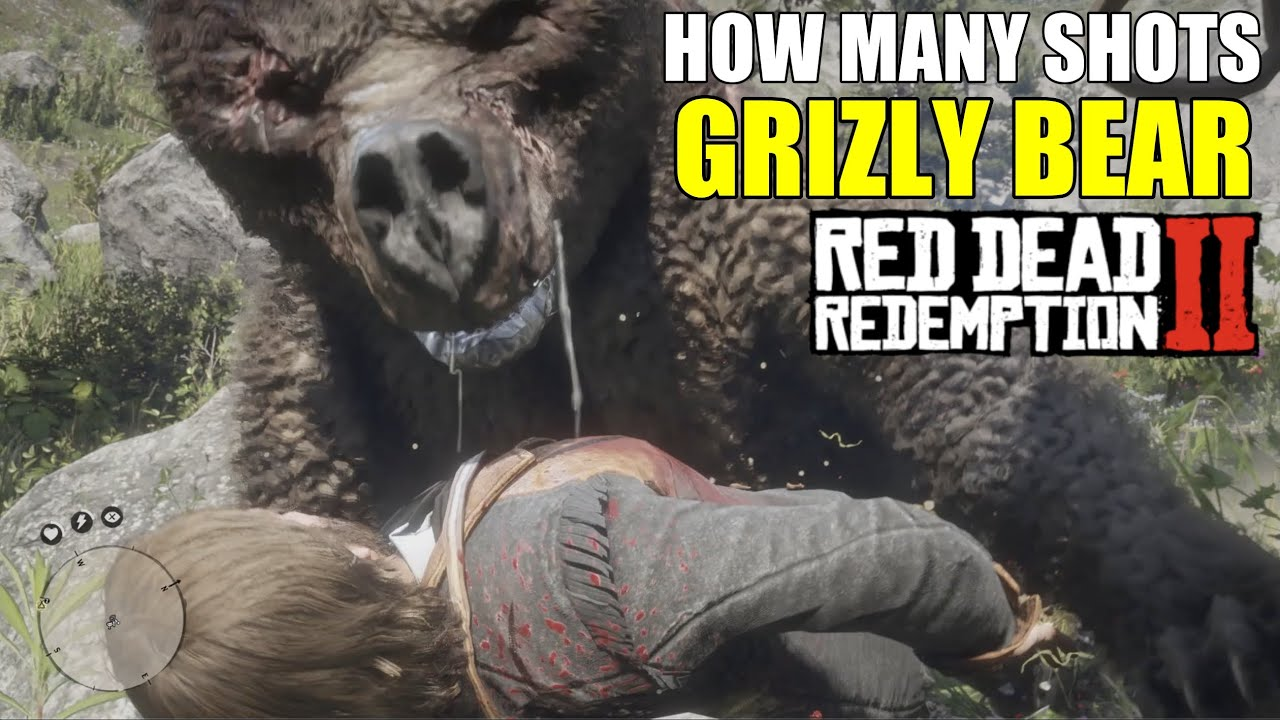How many shots to kill GRIZLY BEAR? (Red Dead Redemption 2)
