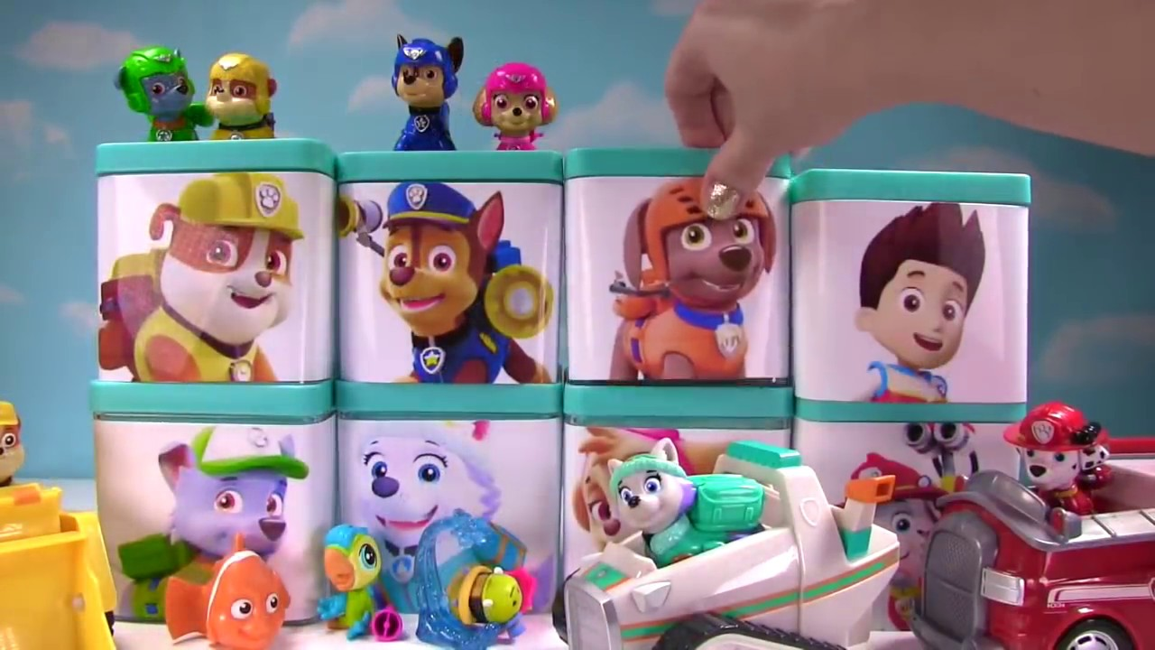 HUGE Paw Patrol & PJ Masks Toy Surprise Blind Box Show