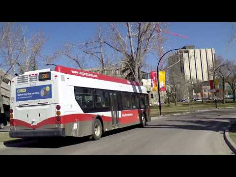Driving to University of CALGARY - Alberta Canada - City Tour/Drive in 2018