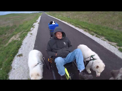 Urban Mushing the Panhandle Trail - Part 3 of 5 - April 28, 2017