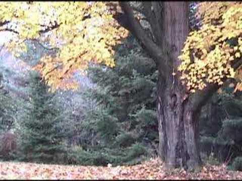 Vermont 2006