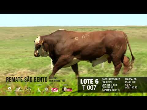 LOTE 06 T 007