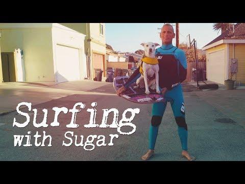 Surfing With Sugar
