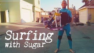 Meet Ryan Rustan and his canine companion Sugar the surfing dog. Ry...