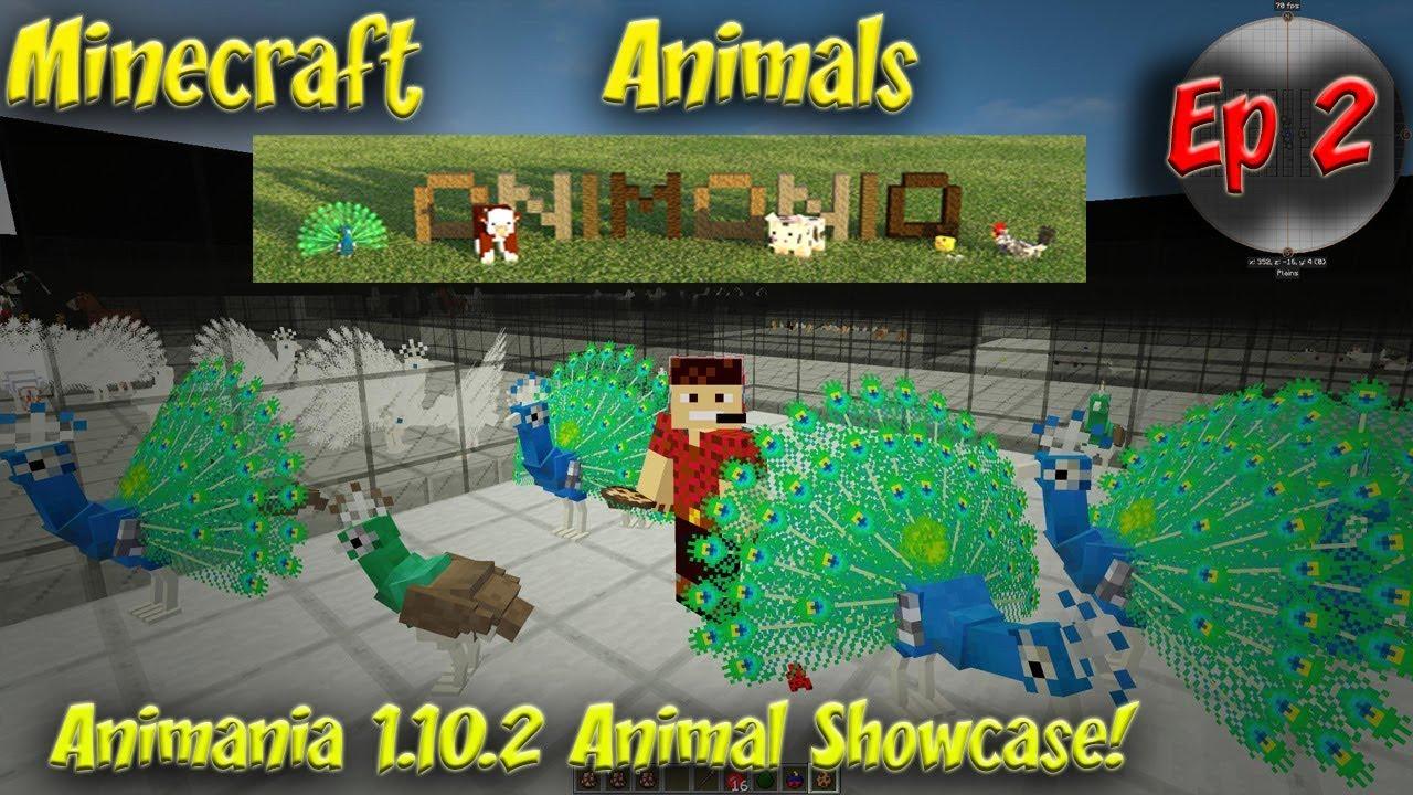 Animania Mod Showcase Animal Showcase Animania 1 10 2 Minecraft Animals Ep2