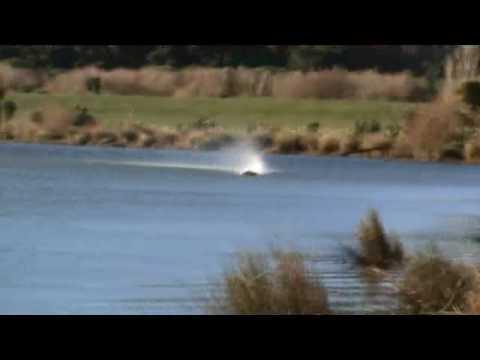 Classic Petrol Hydro Testing 1