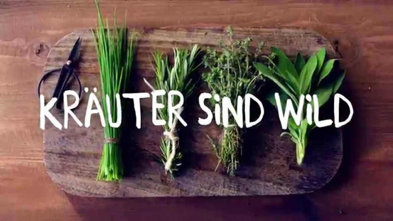 Wilde Küche Mcdonalds   Mcdonald S Wilde Kuche Carsten Hoppner Youtube