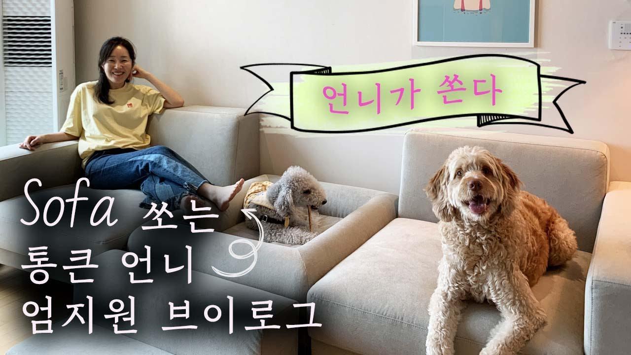 (ENG) 배우 엄지원의 두번째 여름 일상 조각 모음 브이로그   아침 식단   daily vlog