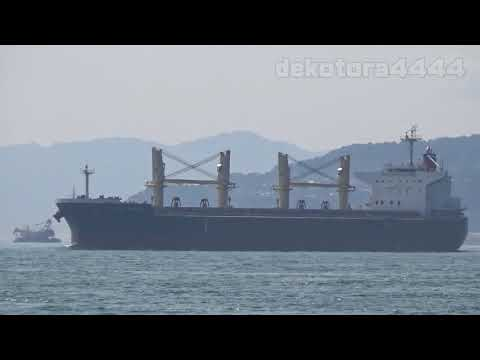 Bulk Carrier「OCEAN HARVEST」