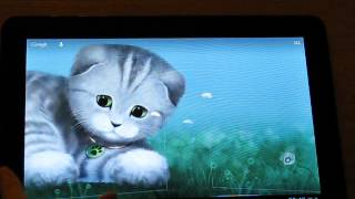 Silvery the Kitten HD LWP