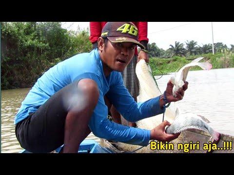 Download Jala ikan pakai perahu,di saat banjir,ternyata,,banyak udang nya/fishing nets
