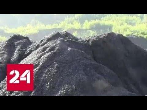 Нелегальная добыча угля: промышленный масштаб и баснословная прибыль