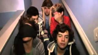 One Direction Video Diary Week 4