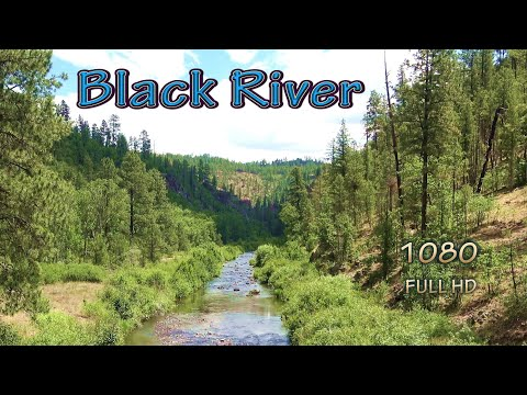 Arizona Backpacking Wilderness Fishing Spots To Catch Brown Trout At Remote Black River With My Dog