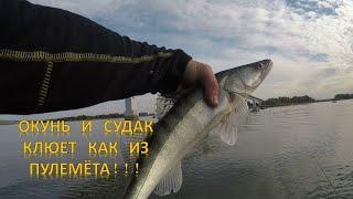 Рыбалка на джиг Ловля СУДАКА и ЗАЧЕТНОГО ОКУНЯ Клюет как из пулемёта