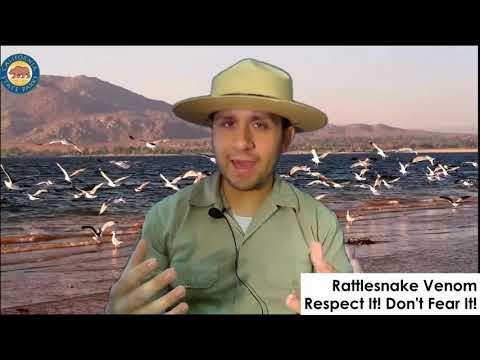 Lake Perris Chat Ep. 1: