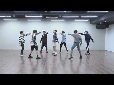 BTS - FAKE LOVE [DANCE PRACTICE + MIRRORED + SLOW 100%]