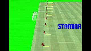 EA SPORTS FIFA 11 - Stamina / Fatigue