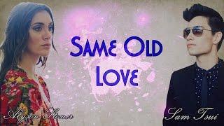 Sam Tsui, Alyson Stoner & KHS - Same Old Love COVER (Lyrics)