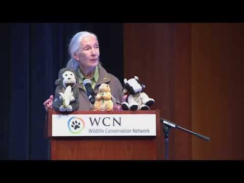 Dr. Jane Goodall · SF Expo 2015