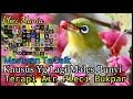 Terapi Air Pleci Bukpar Audio(.mp3 .mp4) Mp3 - Mp4 Download