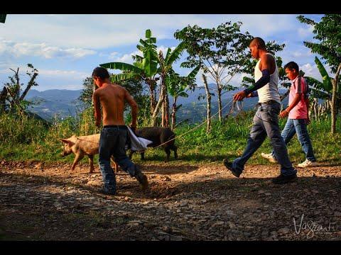 نيكاراغوا توافق على دعوة مراقبين مستقلين لحقوق الانسان  - 13:22-2018 / 6 / 16