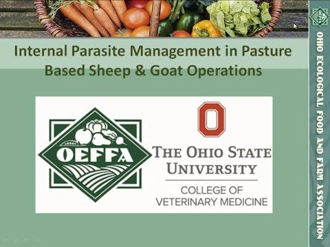 Internal Parasite Management in Pasture Based Sheep and Goat Operations