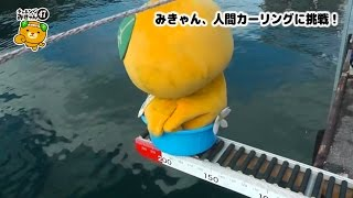 08/47 みきゃん、人間カーリングに挑戦! thumbnail
