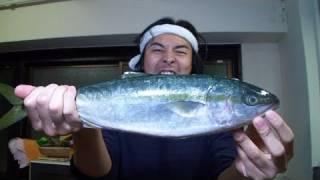 軟弱な男のイナダ三枚おろし|How to make slices of raw fish for young yellowtail.