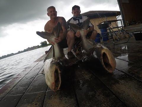 Scottish Fishermen Mekong Catfish & Siamese Carp Fishing Thailand- BKKGUY