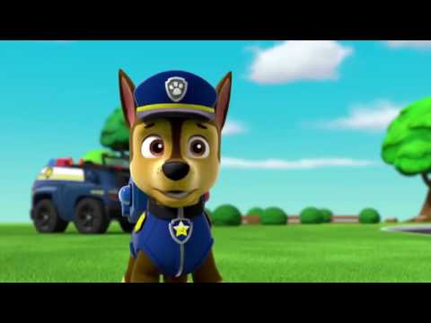 PAW Patrol SE 02 EP 03 Pups Save Jake -  Pups Save the Parade