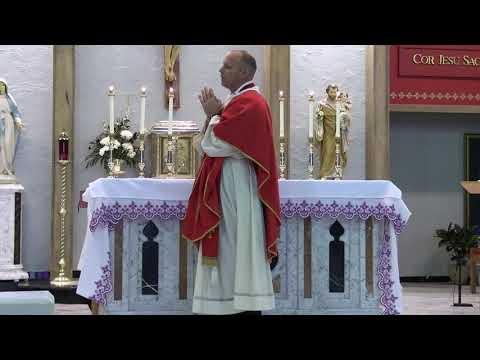 Daily Mass 11/30/20