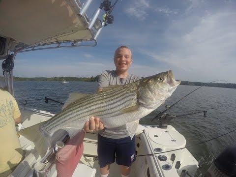 Striper Fishing On Kerr Lake NC