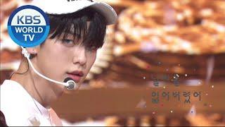 Download TOMORROW X TOGETHER(투모로우바이투게더) - We Lost The Summer(날씨를 잃어버렸어) (Music Bank) | KBS WORLD TV 201113